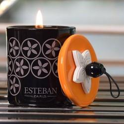 Espelma EstebanParis Cedre